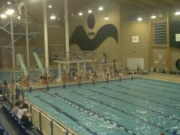 Keep Chelmsford 39 S Outdoor Pool And Diving Facilities At Riverside Chelmsford Liberal Democrats