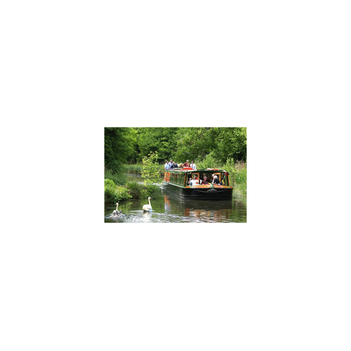 Canal boat cruising on the Basingstoke Canal