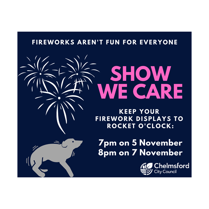 fireworks (Chelmsford City Council)