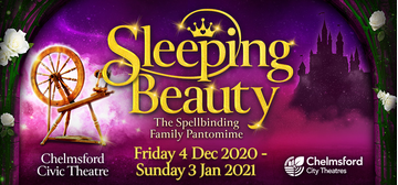 Chelmsford pantomime 2020 (Chelmsford City Council)